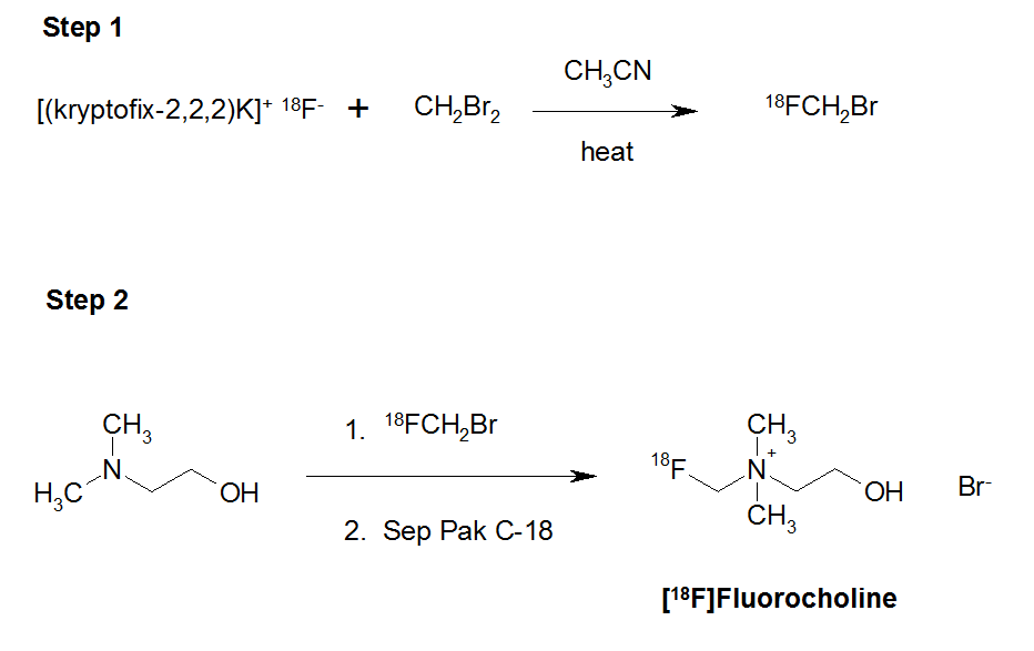 Scheme 1. Syntheis of [19F]fluorocholine