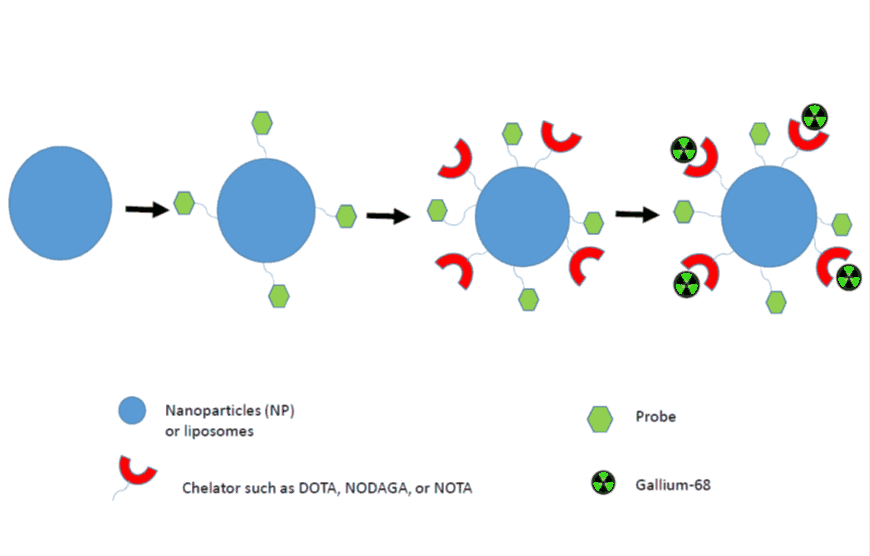 Figure 3. Schematic representation of 68Ga-labelled nanoparticle synthesis for in vivo imaging.
