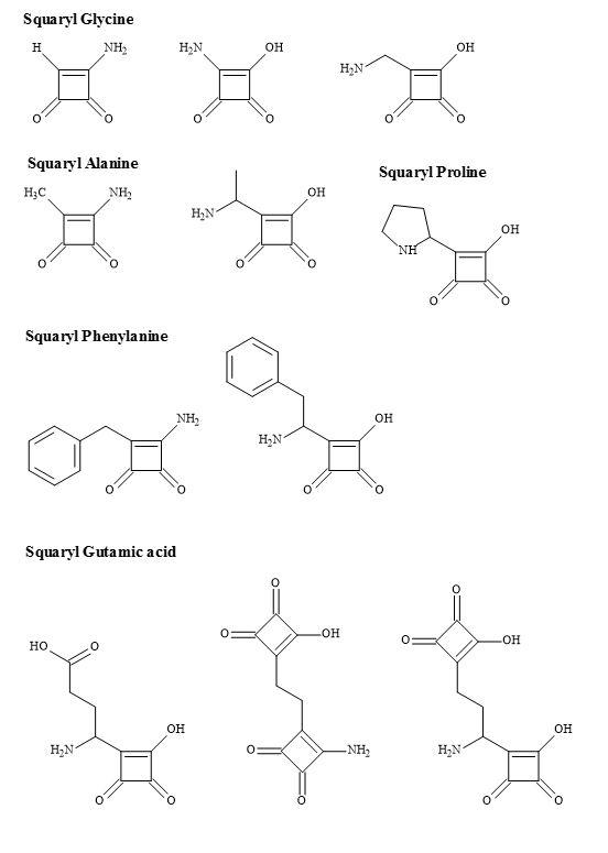 Figure 29. Squaryl amino acid families