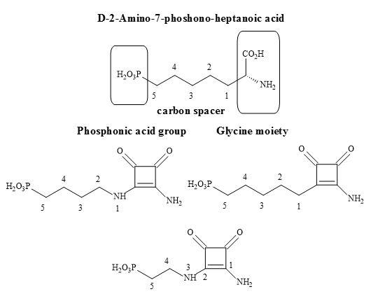 Figure 34. Potential squaramide NMDA antagonists