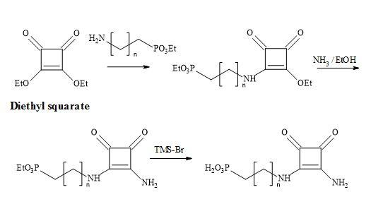 Figure 35. Synthesis of phosphonic acid squaramide