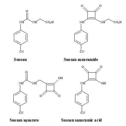 Figure 40. Suosan, semisquarate and semisquaramide