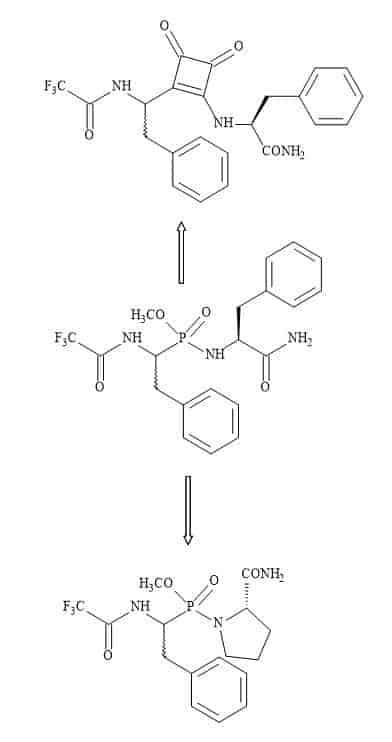 Figure 79. Squaryl-TS